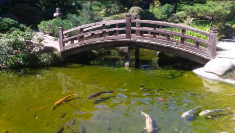 Hakone Gardens Renovations Ahead of Upcoming Groundbreaking Event