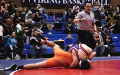 Wrestling team takes down competition