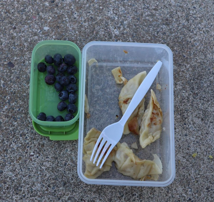 Fried dumplings and blueberries make a good combination.