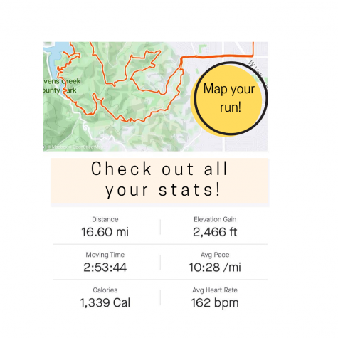 Screen shot of Strava app with running data.