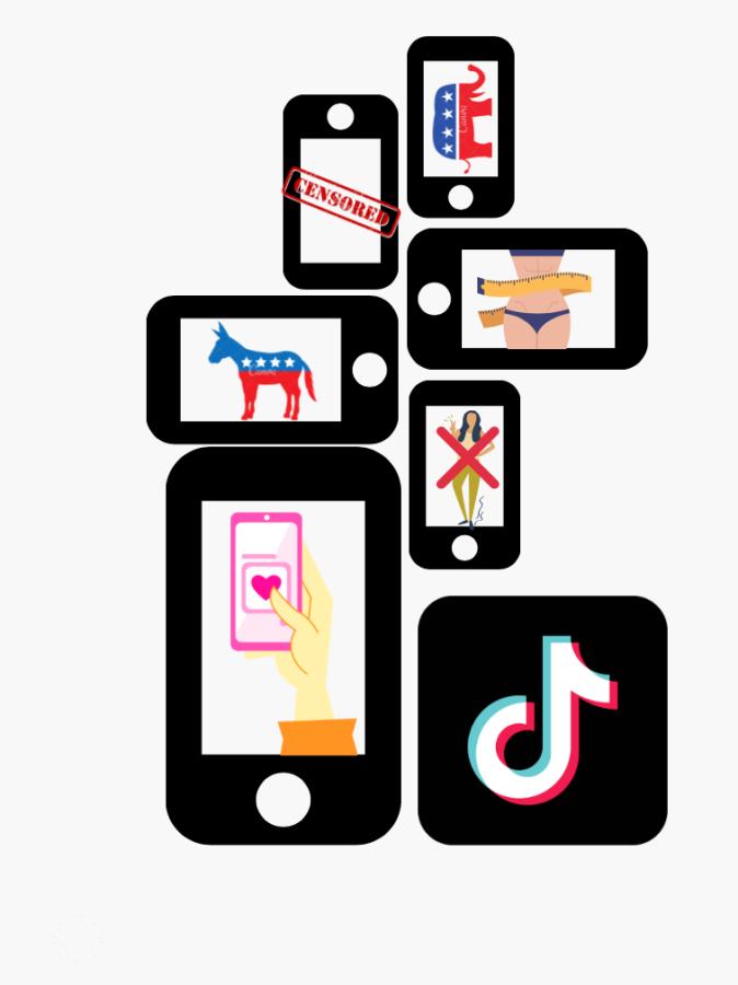 Various aspects of TikTok, the social media platform taking the Internet by storm.