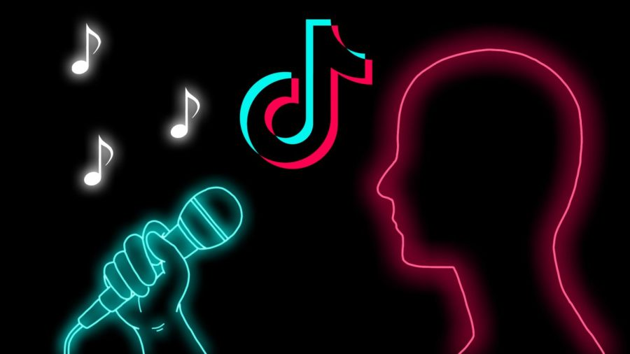 TikTok is becoming a useful tool for up-and-coming musical artists.