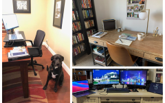 Due to remote learning, teachers' workspaces have changed from classrooms to their desks at home. Take a look at the home workspaces of multiple Lynbrook teachers.